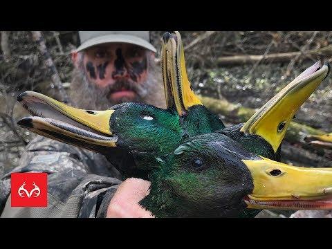 4 Ducks - Public Land Opening Day In Arkansas