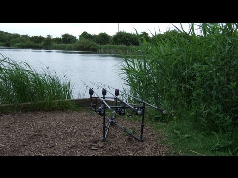 Carp Fishing At Windmill Pond (Hull & District Anglers Association)