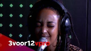 RIMON - Grace Live at 3voor12 Radio