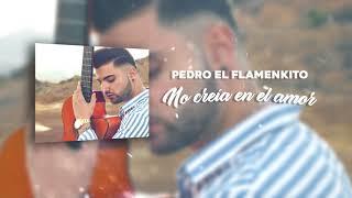 Pedro el Flamenkito - No creía en el amor