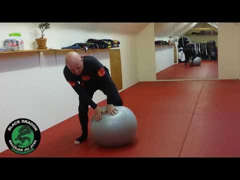 BJJ  Stability ball drills