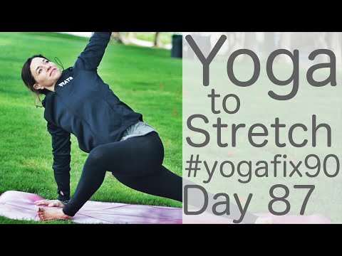 33 Minute Yoga to Stretch Day 87 Yoga Fix 90 with Fightmaster Yoga