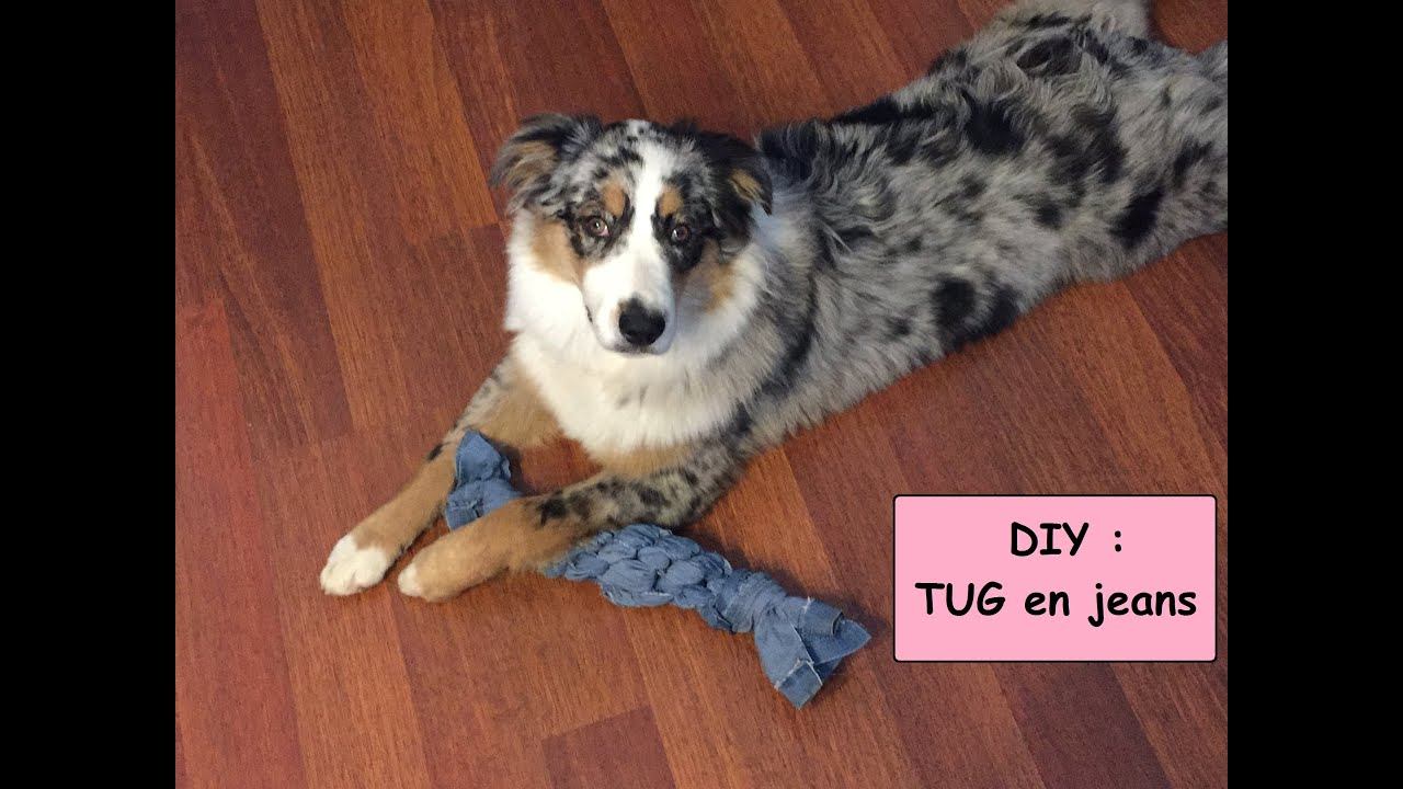 diy jouet pour chien tug en jeans youtube. Black Bedroom Furniture Sets. Home Design Ideas