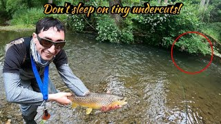 First Big Wild Brown Trout on an Articulated Streamer Streamer Fishing PA