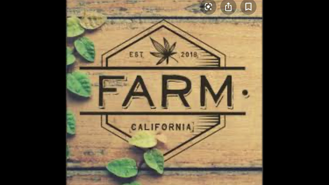 Farm strawberry banana live resin sauce pax pod review!