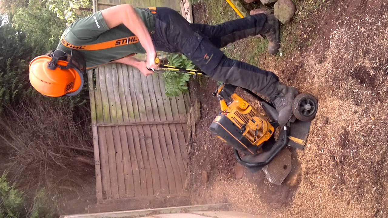 Stump Out Tree Care Devon Grinder For Removing Small