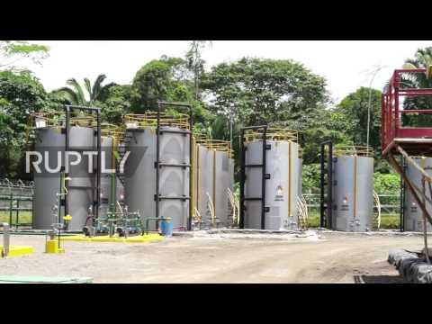 Ecuador: Ecuador begins drilling for oil in Amazon nature reserve