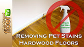 How To Remove Pet Urine Stains From Hardwood Floors YouTube - How to remove black stains from hardwood floors