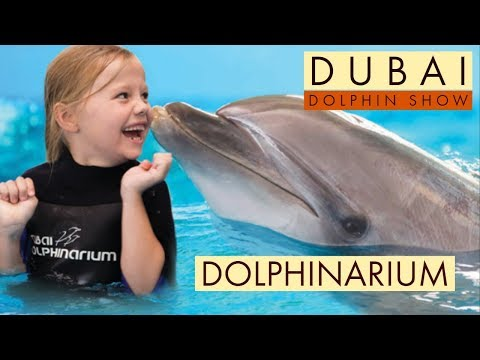 DUBAI DOLPHIN SHOW in HD || DOLPHINARIUM || Syed ALI |🐬🐋🐬🐋🐬🐋