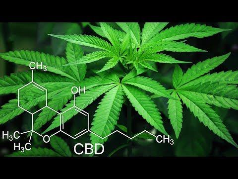 Bei diesen 10 Krankheiten hilft Cannabis!