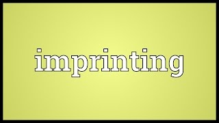 Imprinting Meaning