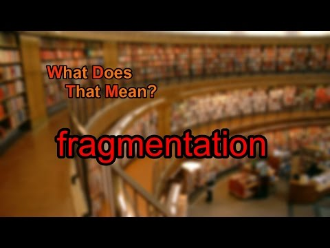 What does fragmentation mean?