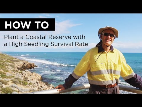 HOW TO Plant a Coastal Reserve - HIGH SEEDLING SURVIVAL RATE