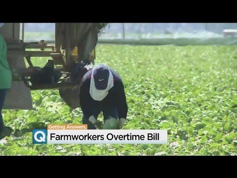 Deadline Looms For California Farm Worker Overtime Bill