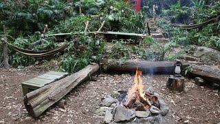 Dschungelcamp: Alles FAKE? (Zusammenfassung)