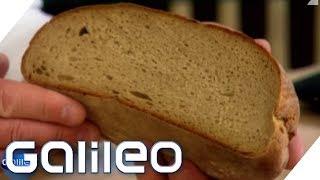 Die 7 beliebtesten Lebensmittel | Galileo | ProSieben