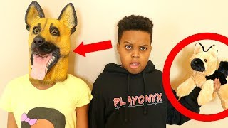 WE TURNED INTO DOGS! - Onyx Kids