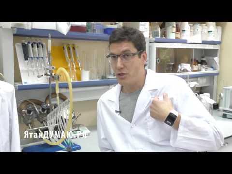 Антибиотики при ангине - Здоровье - Lidernews