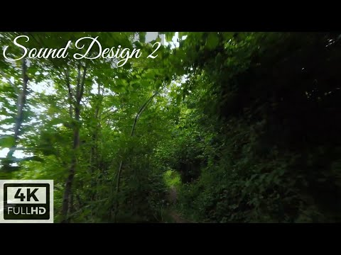 Фото FPV drone - Sound Design 2   Fpv freestyle drone nature wood mountain