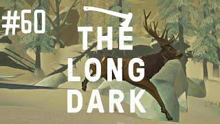 POOR DEER - THE LONG DARK (EP.60)