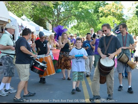 The Buddhahood - Samba March - Park Avenue Festival 2015 Day 2