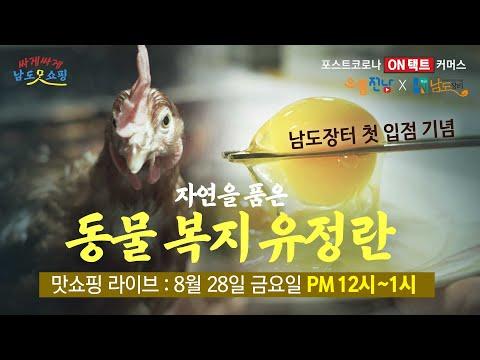 [맛쇼핑예고] 동물복지 유정란 l 무항생제 인증 l 케이지 프리 계란 l 닭에게 미안했던 30년 l 남도장터 입점 기념 첫 방송!!