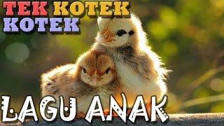 Tek Kotek Kotek Anak Ayam | Lagu Anak Indonesia | Hiburan Anak Mp3