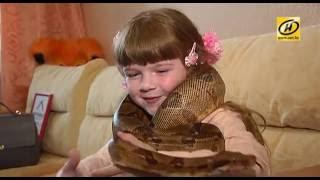 Дети и рептилии: интересные питомцы