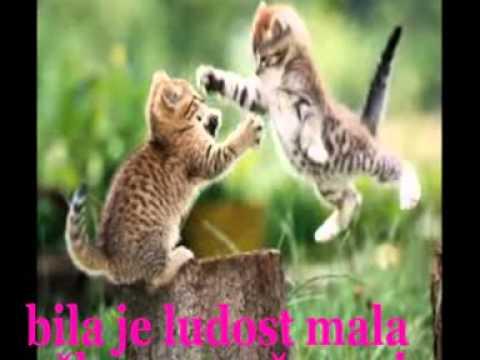 JASNINE MALE MACE & SLAVICA BIRTIĆ - YouTube