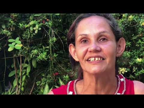 201909AME Brazil Rainforest CLIPREEL H264