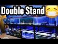 Aquarium Double Stand Rack - 40g Breeder Stands
