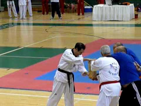Grand Master Suh demonstration
