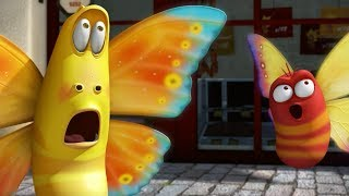 LARVA THE BUTTERFLY Cartoons For Children LARVA Full Episodes