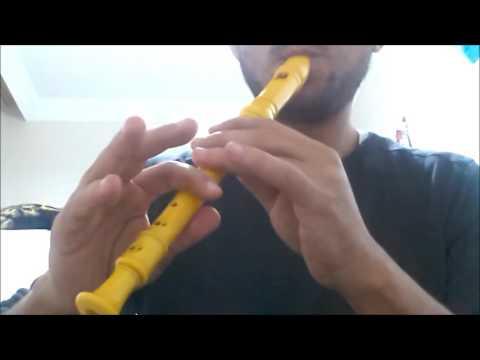 Braveheart theme song flute cover (cesur yürek flütle çalma)