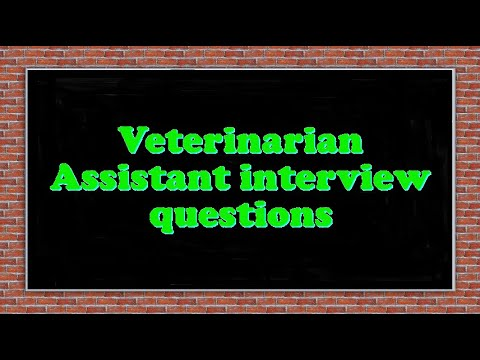 Veterinarian Assistant interview questions - YouTube