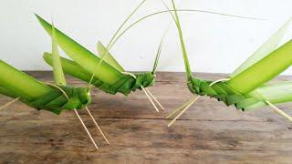 Cách làm con cào cào bằng lá dừa đẹp dễ làm ( c2)