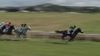 Vidéo de la course PMU PRIX DE L'HIPPODROME D'EVREUX-NAVARRE