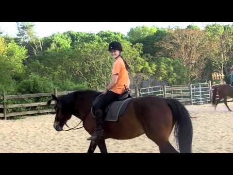 Pony Club Riding Lesson