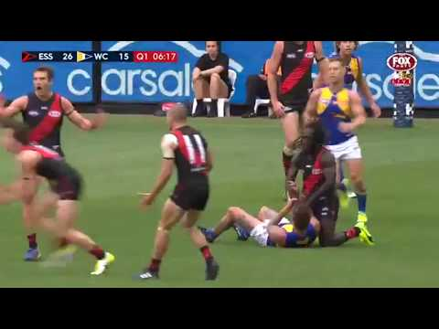 Essendon best moments and goals in 2017 so far