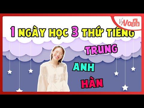 Học Tiếng Anh, Hàn, Trung trong 1 ngày | Review Cao Đẳng Quốc Tế Hà Nội | VyVocab Ep.59
