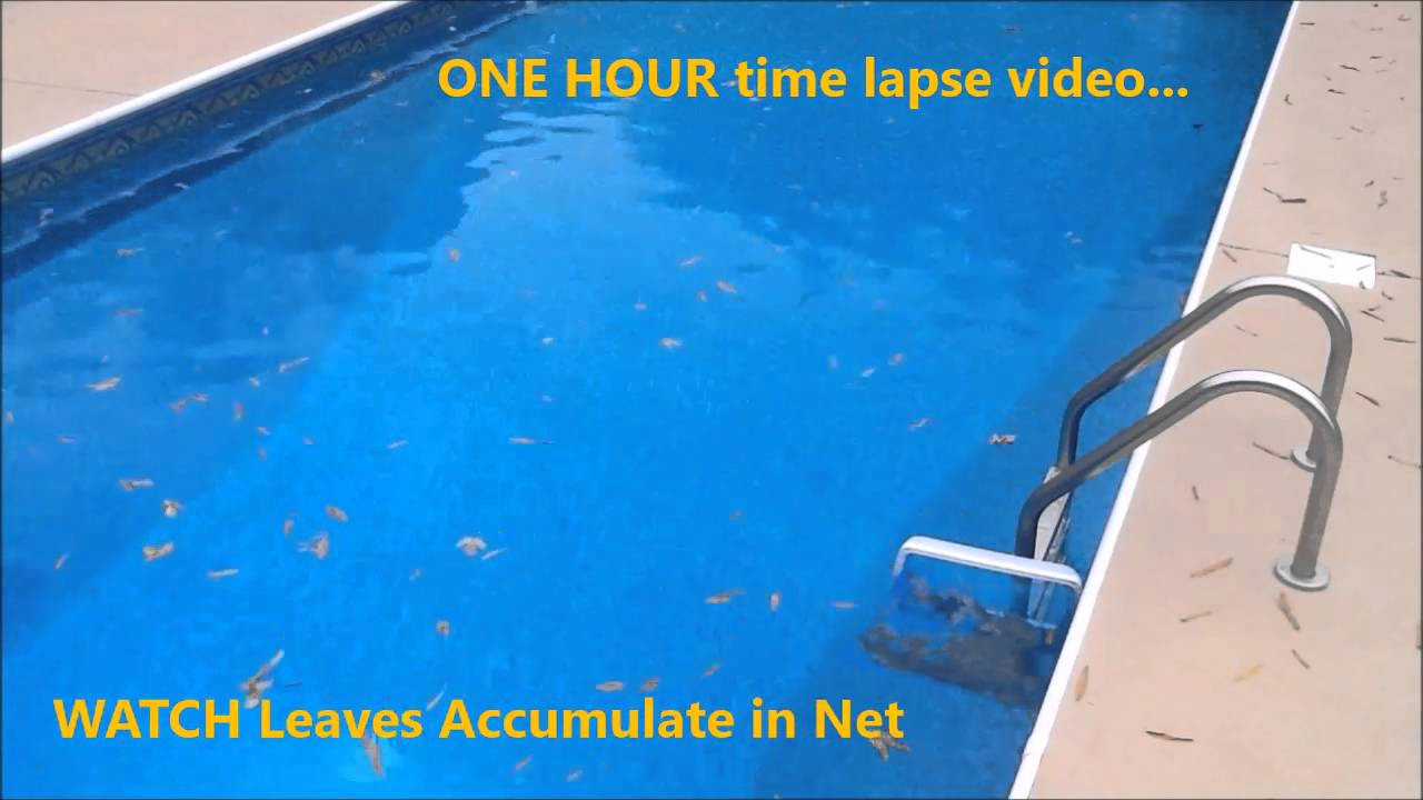 Swimming Pool Leaf Skimmer