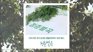 2020 광주북구 숲세권 생활문화축제 「숲의 별곡」, …