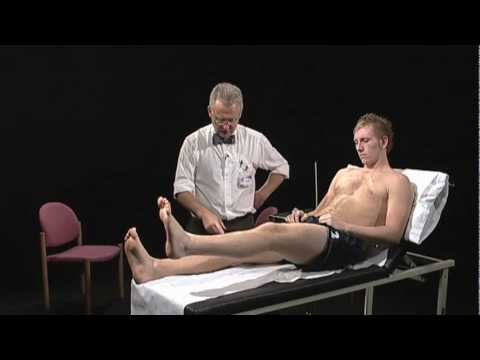 Neurological Examination of the Limbs - Demonstration