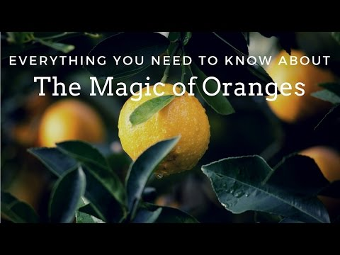The Happiness Fruit: The Magic of Oranges -- Magical Herbs