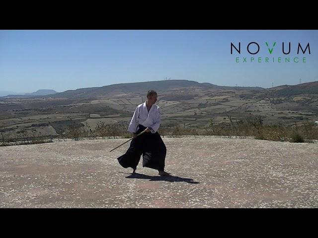 04 Tsuki Gedan Gaeshi-Aikido Novum Experience-Jo Suburi Nijuppon-Tsuki Gohon-突き下段返し-合気道 杖素振り20本 突き5本