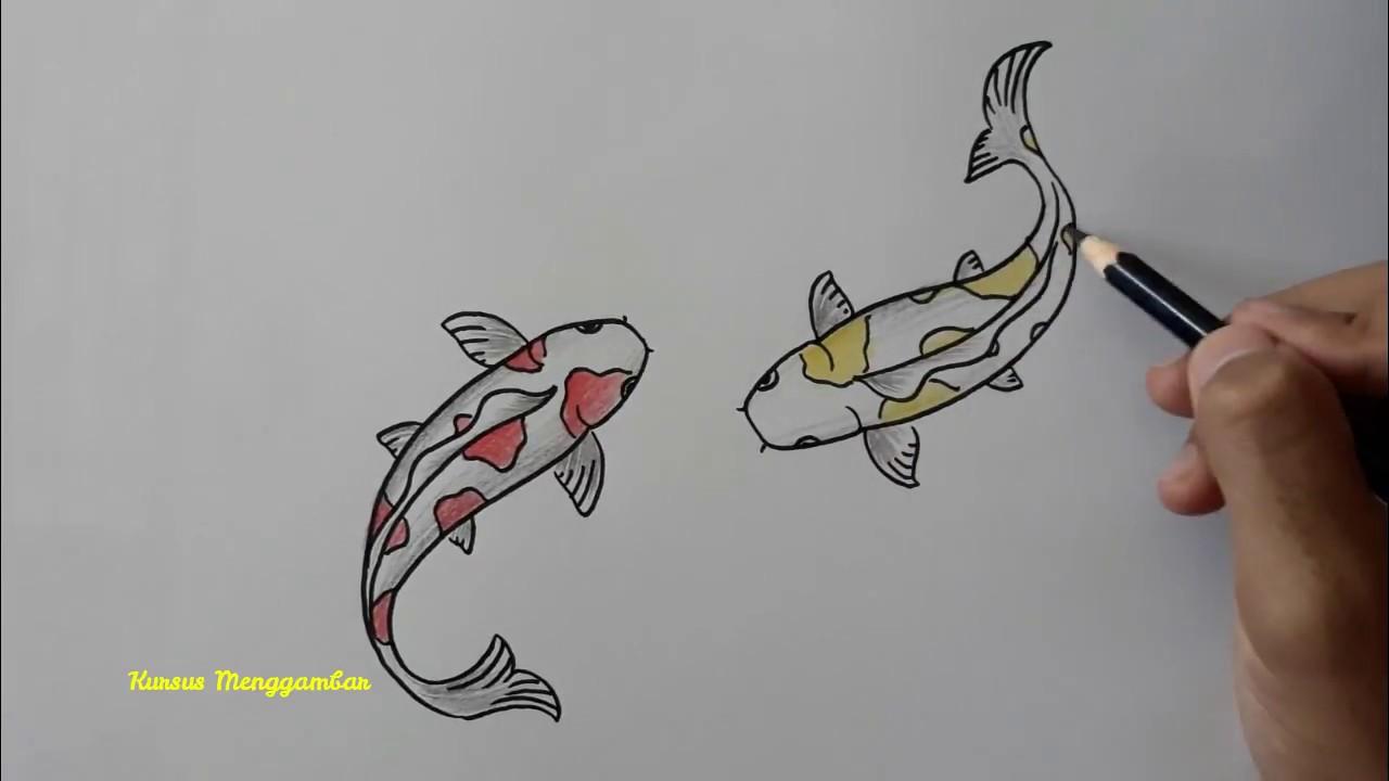 Cara Mudah Menggambar Ikan KOI Cantik Beserta Mewarnainya - YouTube