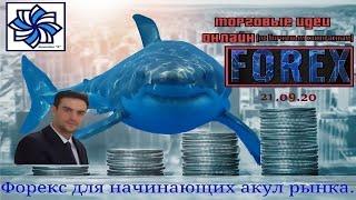 Инвестиции в форекс