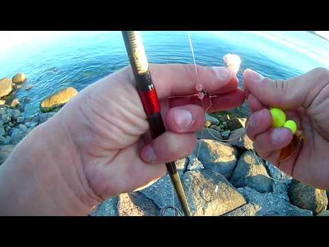 Рыбалка Балтийск камбала