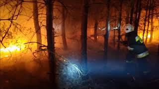 Pożar lasu - Odrzywół 04.05.2018 r.