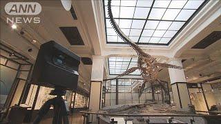 「VR」国立科学博物館を自宅で見学 HPで無料公開へ(20/04/18)